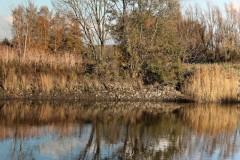 Herfst-Serskamp-Schellebelle-20191119-013